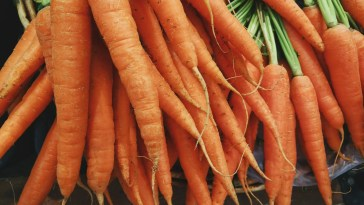 freezing-carrots-from-garden