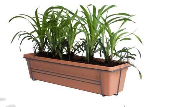 Leliegras in ELHO Green Basics balkonbak (Mild Terra)