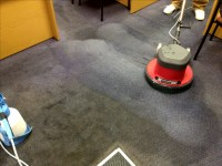 Commercial Carpet Cleaning | The Greener Carpet Clean
