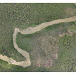 Os drones que ajudam a monitorar desmatamento e caça ilegal