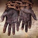 5 empresas envolvidas com trabalho escravo
