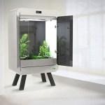 Quer plantar em casa? Estufa inteligente e compacta é perfeita para apartamentos!