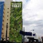 Minhocão, em SP, vai ganhar 20 novos jardins verticais