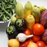 Aplicativo gratuito ensina a cultivar horta em casa