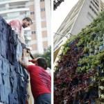 Como criar um jardim vertical em casa usando calças jeans velhas