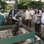 Conheça a central de compostagem que trata o lixo orgânico gerado pelas feiras livres em SP