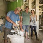 A cooperativa que transformou o Brasil no maior produtor de arroz orgânico da América Latina