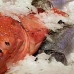 Taxa perigosa de mercúrio é encontrada nos peixes que consumimos diariamente