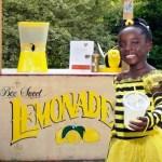 Menina de 11 anos vende limonada orgânica com mel e doa lucro para ação de proteção às abelhas