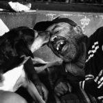 Agora é lei! Em São Paulo, moradores de rua podem entrar em abrigos com seus animais de estimação