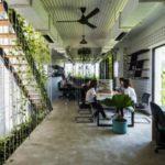 O escritório repleto de plantas nativas que busca oferecer um ambiente de trabalho mais saudável e menos estressante