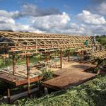 Curso de Construção em Bambu ensina a construir sem poluir, no interior de São Paulo