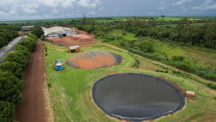 """No Paraná, município poderá """"zerar"""" conta de energia com uso do biogás"""