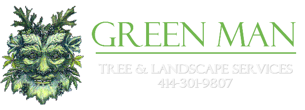 Tree Removal, Tree Care, Arborist, Waukesha, Milwaukee