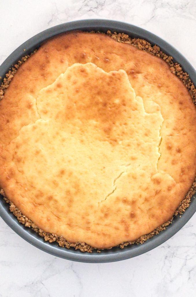 La cheesecake appena uscita dal forno