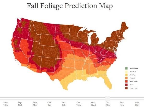 Peak Foliage Map