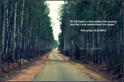 http://www.xarisxpressions.org/let-the-lord-determine-your-path/proverbs-169/