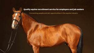 Find Equine Staff | Employ a Groom | Advertise a Groom Vacancy | Employment Advice