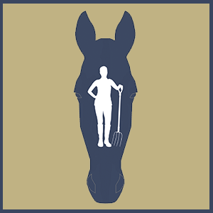 Equine Employers Subscribe to our Website Service