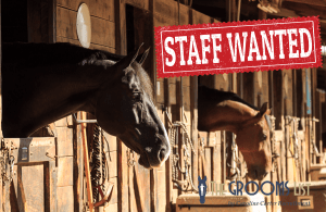 Advertise horse jobs online with The Grooms List by Caroline Carter Recruitment Ltd