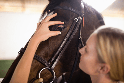 First Aid at Horse Shows