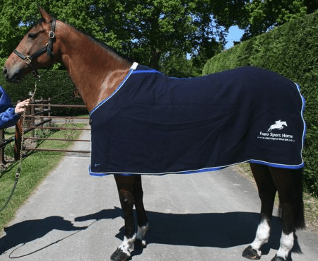 Horse lovers christmas gift ideas