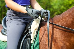 Christmas Stocking Fillers for Horse Lovers - Riding Lesson