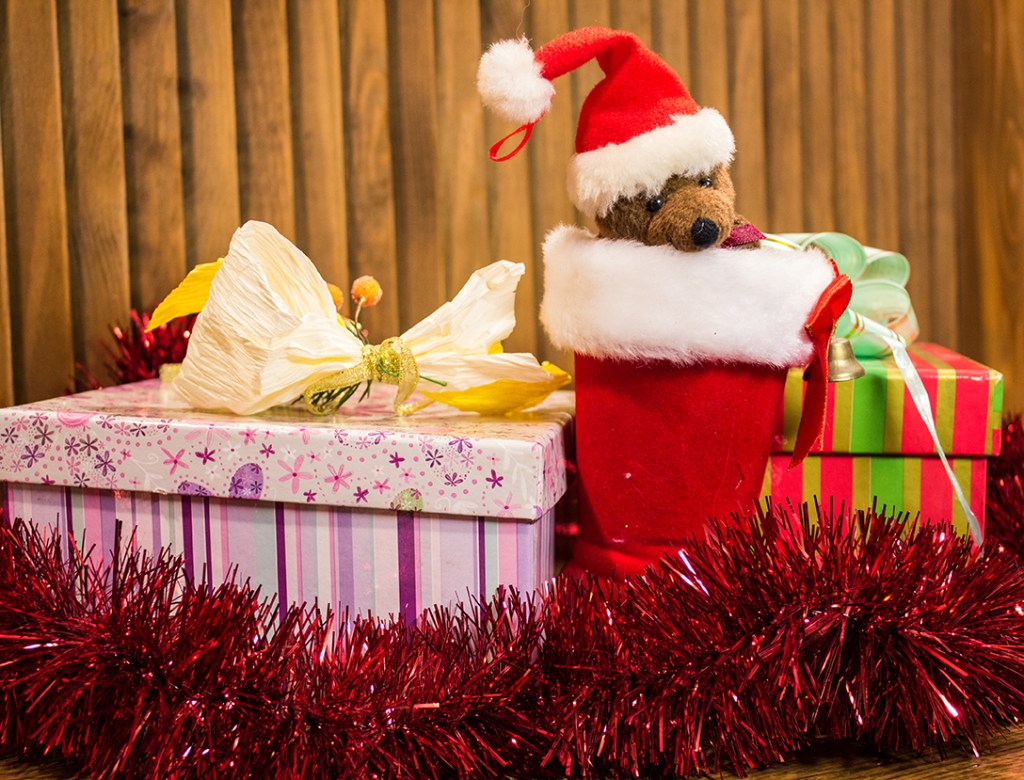 Christmas gift ideas for horse lovers - The Grooms List