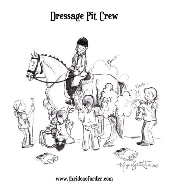 Equine Disciplines - Dressage Pit Crew
