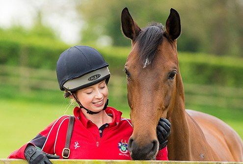 Is the Equine Industry getting tougher - A Grooms perspective - BHS Qualifications