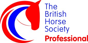 BHS Qualifications - British Horse Society Career Pathways