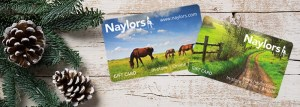Christmas Stocking Fillers for Horse Lovers - Naylors Equestrian Gift Card