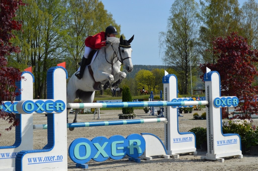 Equine Disciplines - Show Jumping