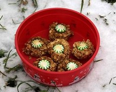 Tips for Grooms Working with Horses at Christmas - Cookies for the Horses at Christmas