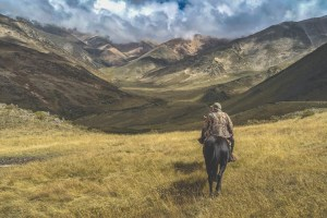 How to FAIL at getting your next equine job - disappear off the face of the earth