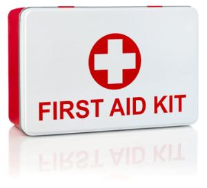 Freelance Groom - First Aid Training