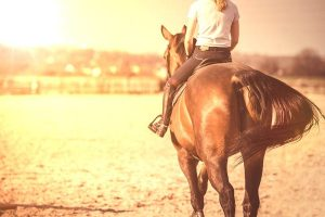 Spring Forward in the Equine Industry - Riding in the Evenings