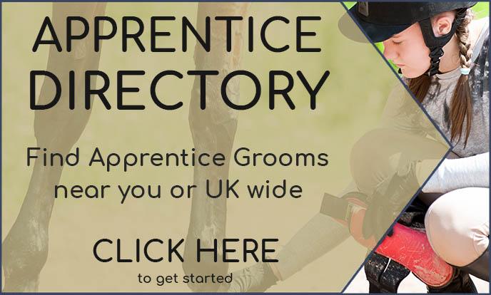Apprentice Grooms Directory