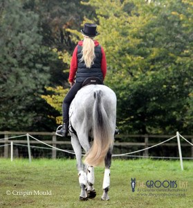 The Ultimate Guide to Badminton Horse Trials - Competition Grooms