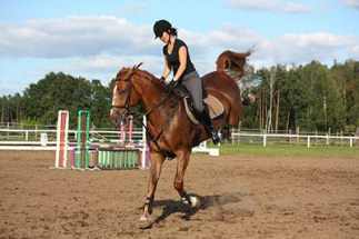 Are you ready to be a Sole Charge Groom - riding alone