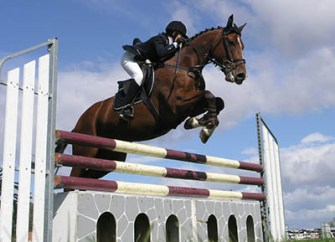 Become a horse riding instructor - the voice we hear when we ride