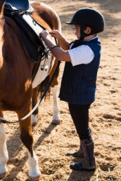 Have you got what it takes to become a Horse Riding Instructor ...