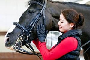 A Sneak Peak at an equine Employers Wish List - Genuine Interest