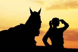 A Sneak Peak at an equine Employers Wish List - Job Longevity