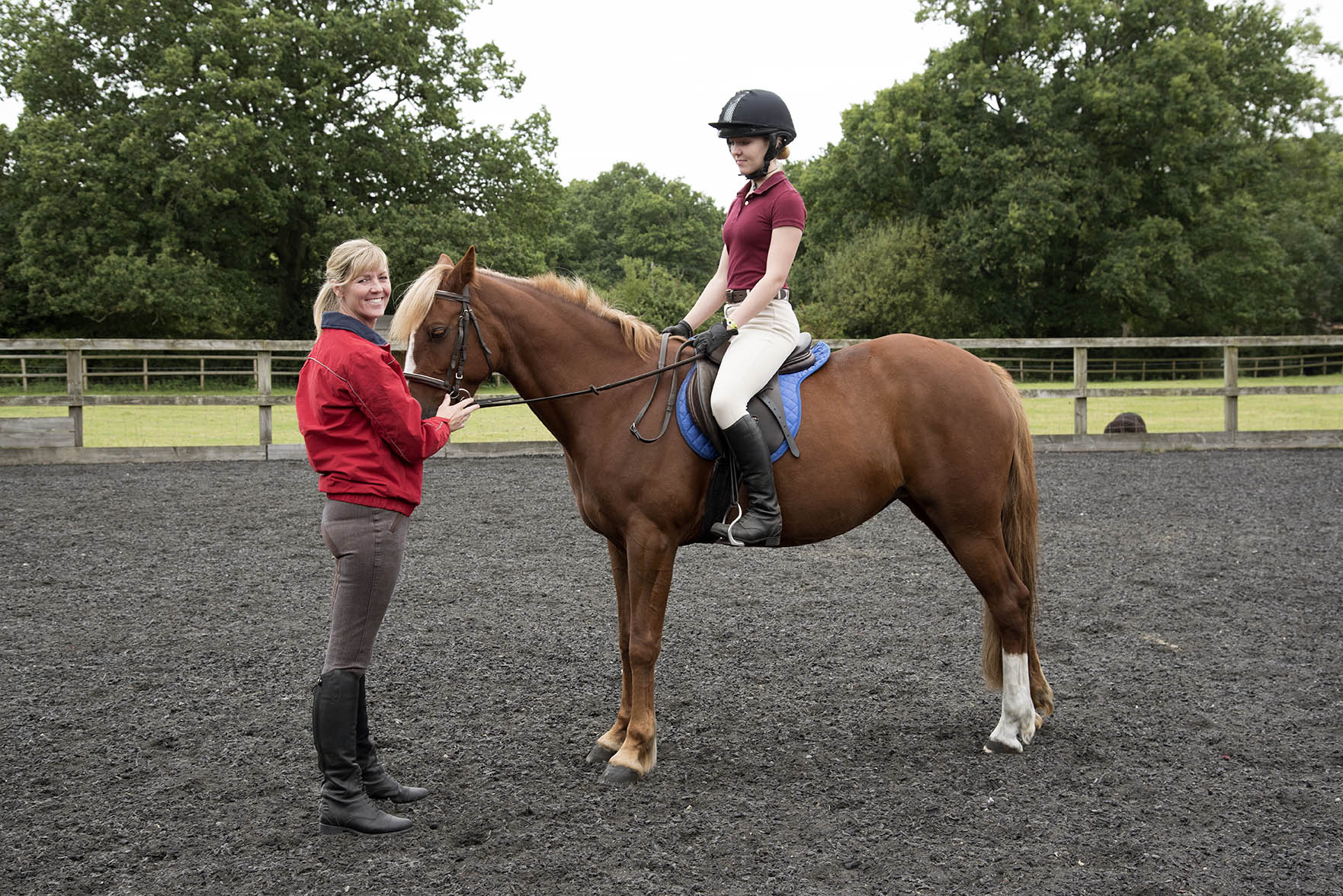 Equine Apprenticeship Myths - BUSTED!