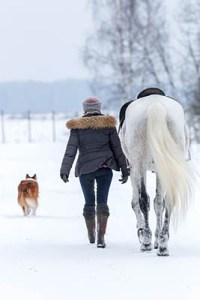 Getting winter ready in the equine industry - Warm Clothing