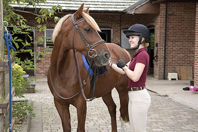 The Grooms List Apprentices Zone - How an Apprenticeship can Benefit Your Equine Career 3
