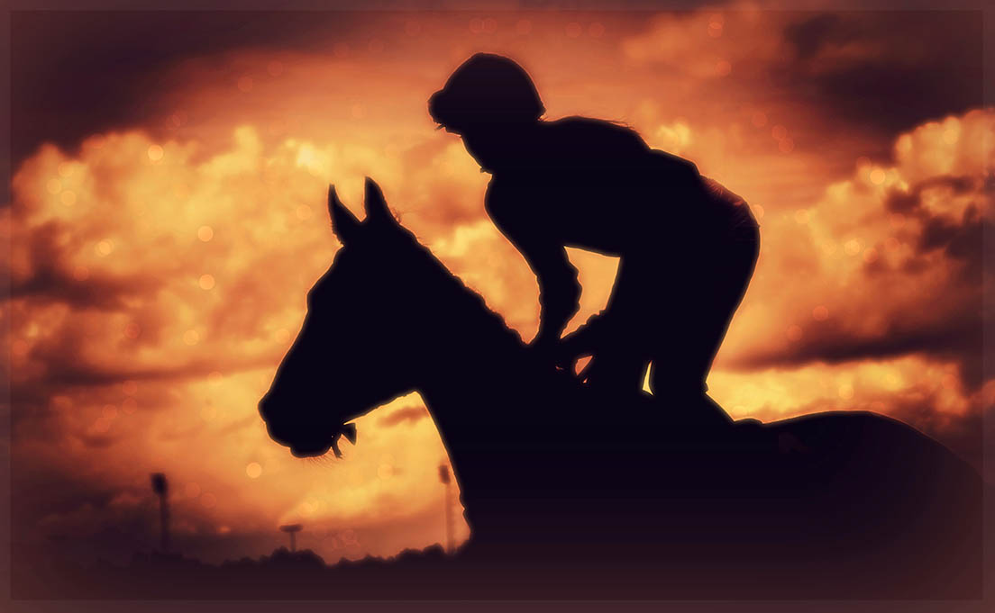 What are Work Riders and Work Rider Jobs