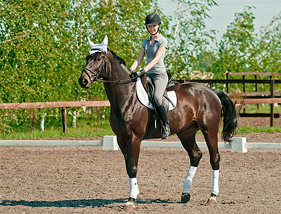 Get into Dressage to Music by Alanna Clarke - Riding your routine