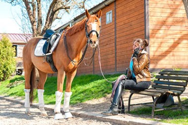 Is the Equestrian Industry getting tougher - A Grooms perspective - are grooms becoming lazy